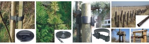 Ochrona drzew